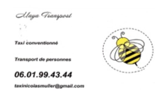 Maya transport • partenaires et références • Jean-Pierre Lenzi • Consultant - Médiateur - Psychanalyste
